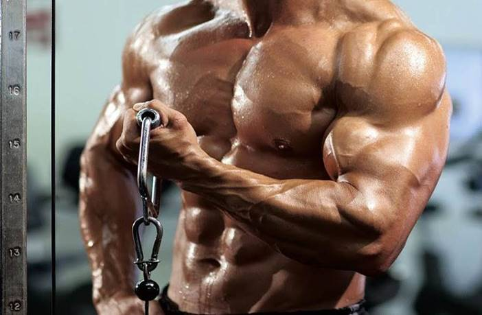 Claves para ganar masa múscular