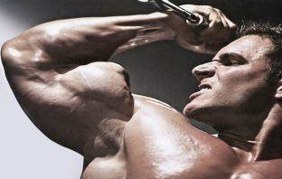 Rutina para bíceps