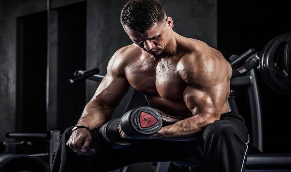 Rutinas de musculación para masa muscular