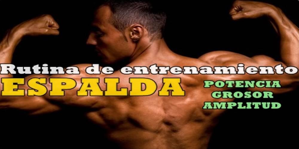Entrenamiento de espalda para ganar amplitud y potencia | Atopedegm