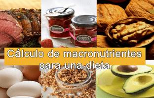 Cálculo de macronutrientes