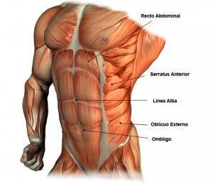 ejercicios para quemar la grasa delos costados del abdomen