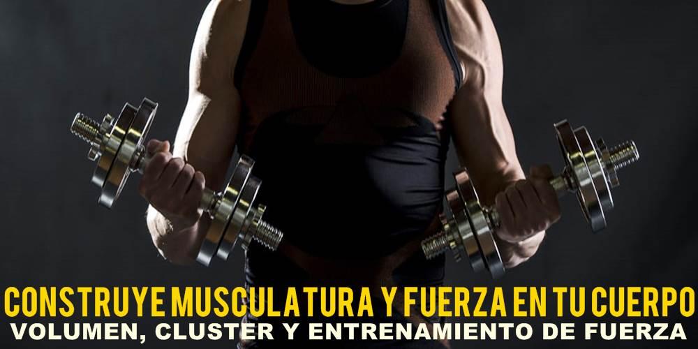 Cluster y entrenamiento