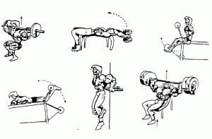 mejores ejercicios gym