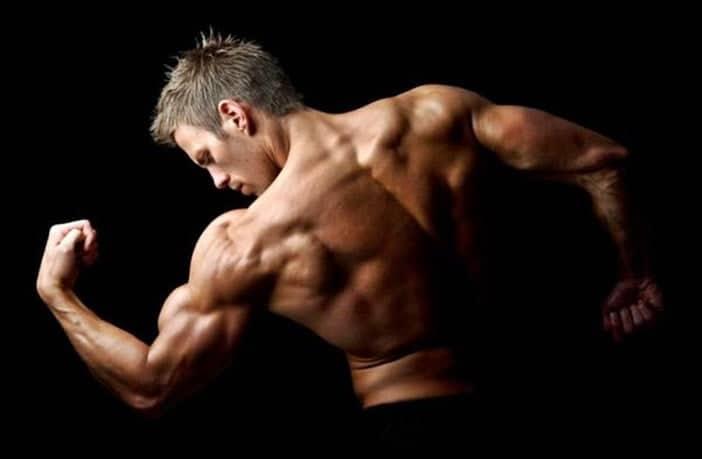 Entrenamiento de espalda para definición muscular | Atopedegym