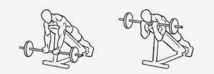 Curl con barra en banco inclinado, agarre estrecho bíceps