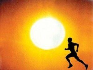 Requerimientos nutricionales en un ambiente caluroso