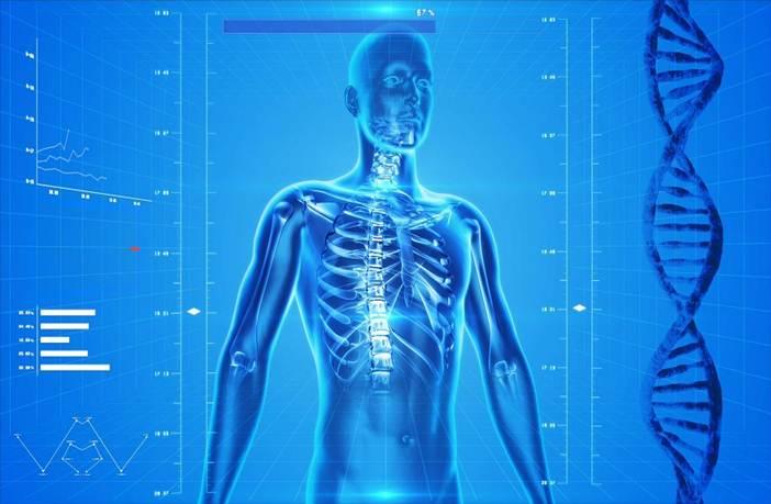 biomecánica del cuerpo