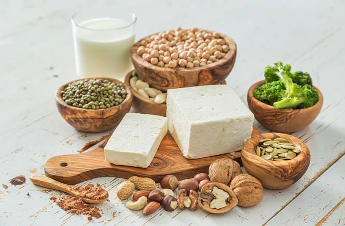 alimentos con proteina vegetal