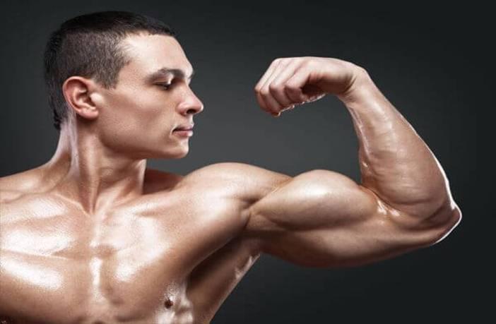 Volumen en tus bíceps