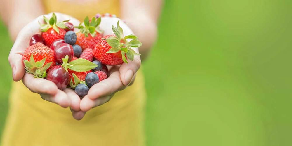 mitos-dieta