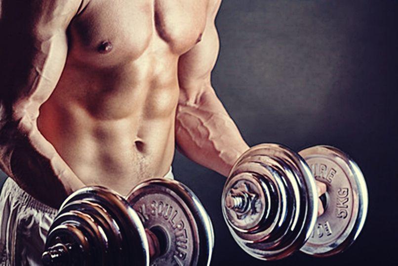 músculos-gym