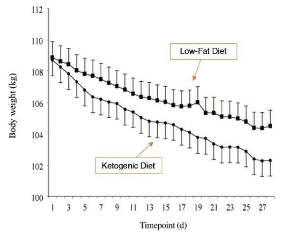 Estudio dieta cetogénica para perder grasa