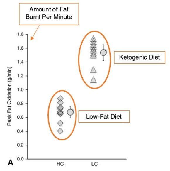 quemar más grasa durante el ejercicio durante dieta cetogénica