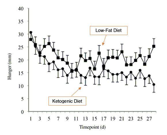 Menos hambre con dieta cetogénica