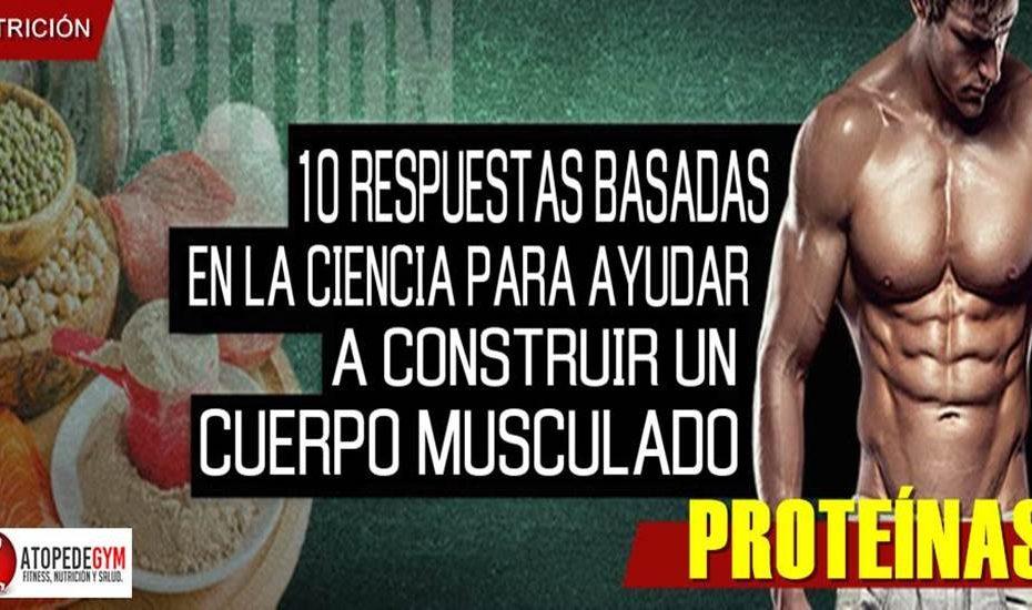 Respuestas sobre las proteínas
