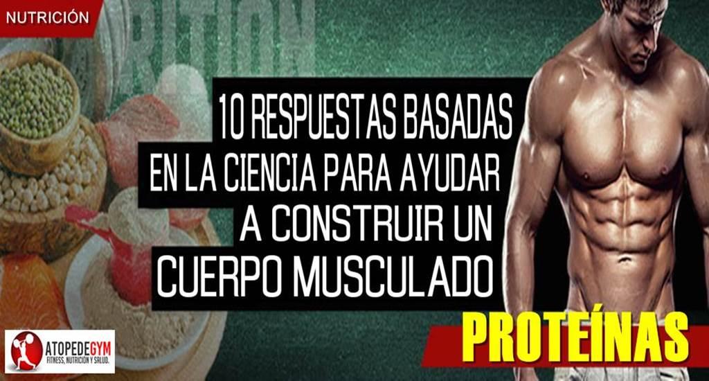 respuestas-sobre-proteinas