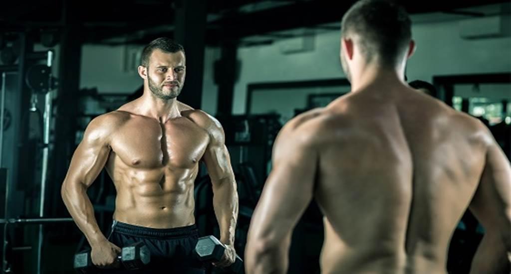 distribución muscular de ejercicios