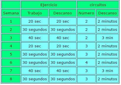 Ejemplo de estructura de entrenamiento de circuito