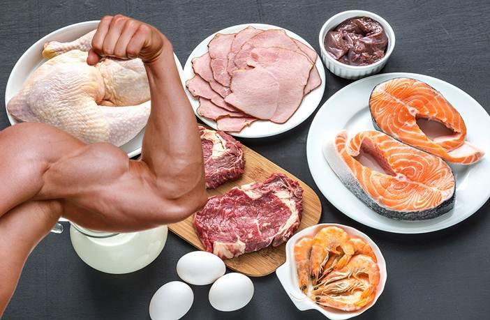 proteinas para músculos