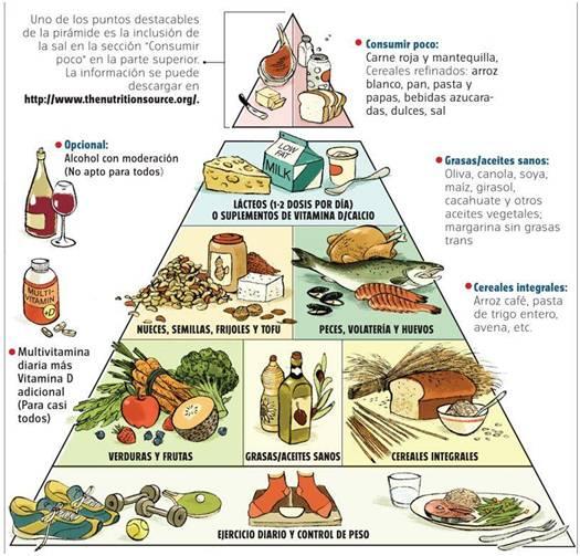 pirámide alimenticia de harvard