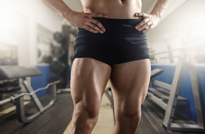 Musculo del cuádriceps femoral