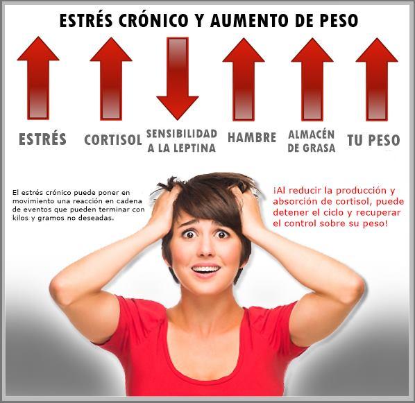 Estrés crónico y aumento de peso - Cortisol