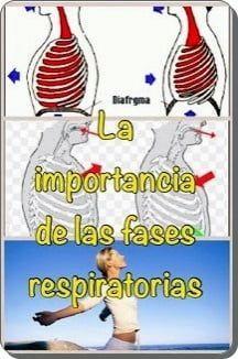 fases respiratiorias