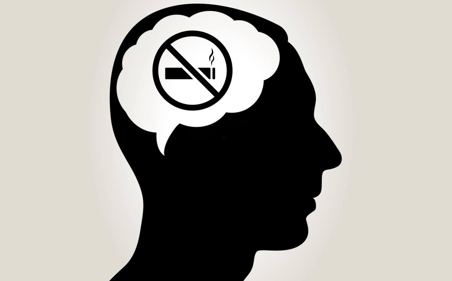 La nicotina afecta las partes del cerebro que juegan un papel en la atención, la memoria, el aprendizaje y la plasticidad cerebral