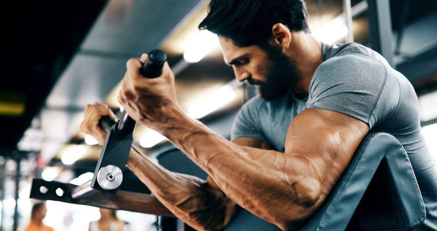 Anabolismo en el gimnasio - haciendo curl de bíceps en banco scott