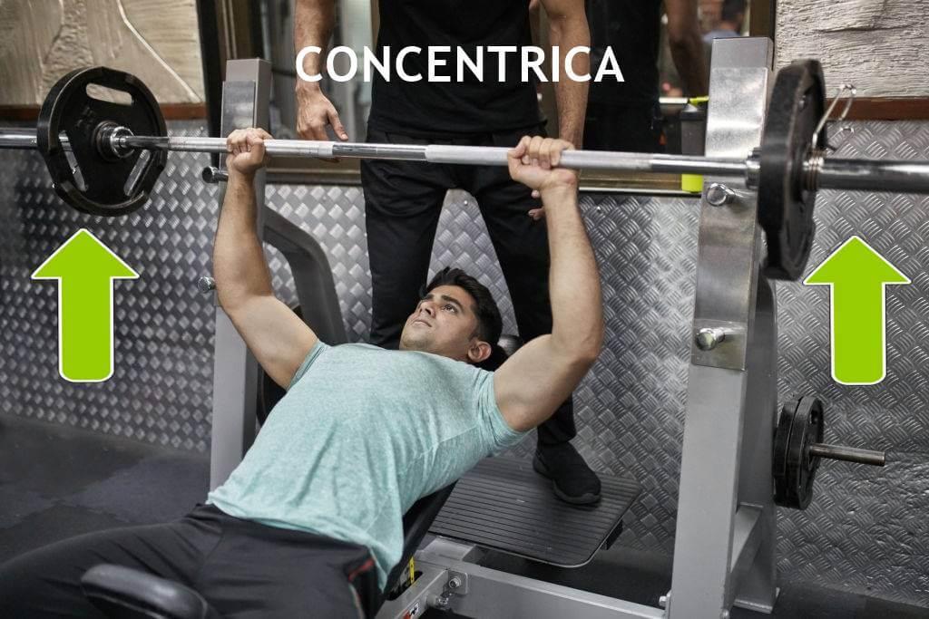 contraccion-concentrica