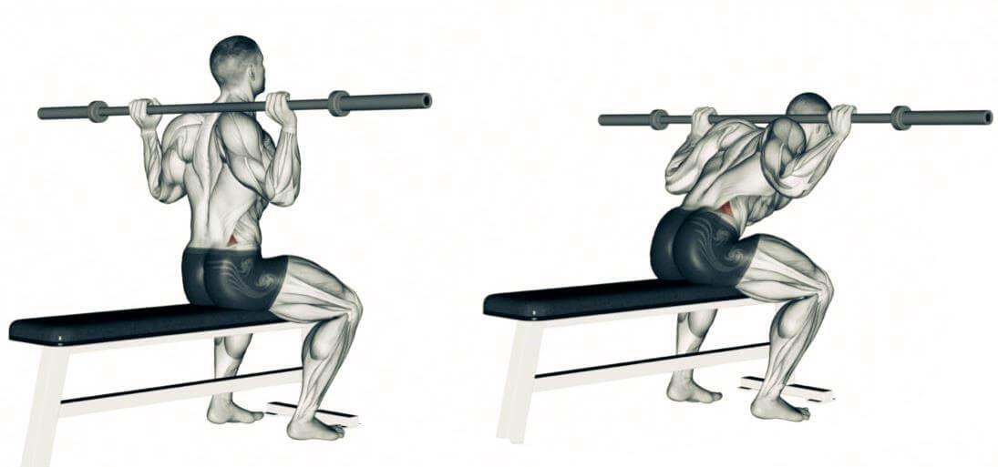 ejercicio-buenos-dias-sentado